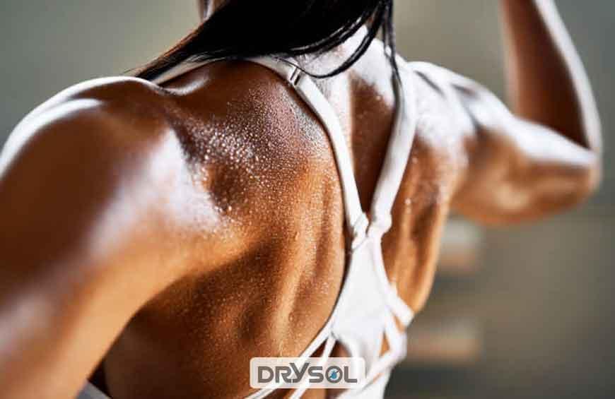 درایسول - ترکیبات شیمیایی عرق